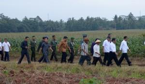 Presiden Jokowi menuju ke tempat dialog di tengah sawah dengan petani di Lampung, Selasa (25/11)