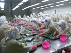 Menyerap tenaga kerja