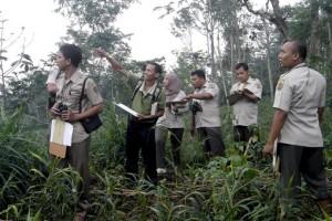 Pengendali Ekosistem