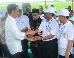 Presiden Jokowi menyerahkan penghargaan Adhikarya Pangan Nusantara, di Kab. Subang, Jabar, Jumat (26/12)