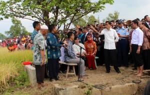 Presiden Jokowi didampingi Mentan Amran Sulaiman berdialog dengan petani, di areal persawahan Desa Jetis, Kab. Ponorogo, Jatim, Jumat (6/3)