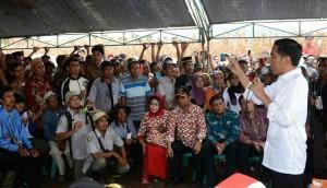 Presiden Jokowi berdialog dengan petani saat Panen Raya Jagung, di Dompu, NTB, Sabtu (11/4)
