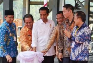 Presiden Jokowi bersama sejumlah pejabat menekan tombol sirene tanda peresmian pembangunan smelter nikel, di Morowali, Sulteng, Jumat (29/5)