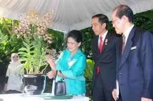 Presiden Jokowi dan Ibu Negara Iriana menyaksikan bunga yang diberi nama 'Dendrobium Iriana Jokowi', di Singapura, Rabu (29/7)