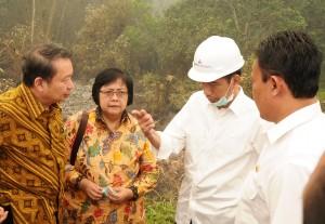 Presiden Jokowi berdiskusi mengenai kebakaran hutan di Pulau Pisang, Kalteng, Kamis (24/9)
