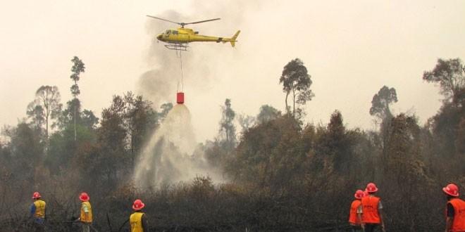 pesawat heli padamkan kebakaran hutan