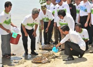 Presiden Jokowi secara simbolis melepaskan penyu di pesisir pantai Pulau Karya, Kepulauan Seribu, Kamis (14/4) (Foto: Humas/Jay)