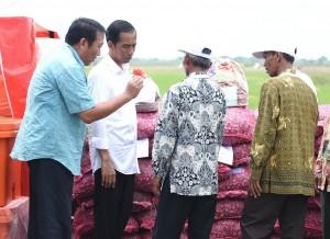 Presiden Jokowi berdialog dengan Petani Bawang di Brebes, Jawa Tengah, Senin (11/4) (Foto: Humas/Agung)