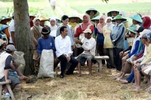 Presiden Jokowi didampingi Ibu Iriana berdialog dengan petani di Desa Luwung Gede, Kecamatan Larangan, Brebes, Jawa Tengah, Senin (11/4) (Foto: BPMI/Cahyo)