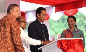 Presiden Jokowi saat meresmikan sejumlah proyek infrastruktur kelistrikan di Papua dan Papua Barat, di Sentani, Kabupaten Jayapura, Papua, Senin (17/10) sore. (Foto:BPMI Setpres/Rusman)