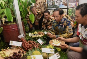 President Jokowi, accompanied by Coordinating Minister for the Economy Darmin Nasution and Minister of Agriculture Amran Sulaiman, visit one of the stands at the Fruit Indonesia 2016 Exhibition at Lapangan Parkir Timur Senayan, Thursday (17/11). (Photo by: Public Relations Division/Rahmat)
