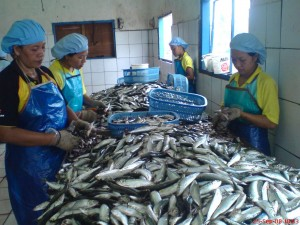 Industri Ikan