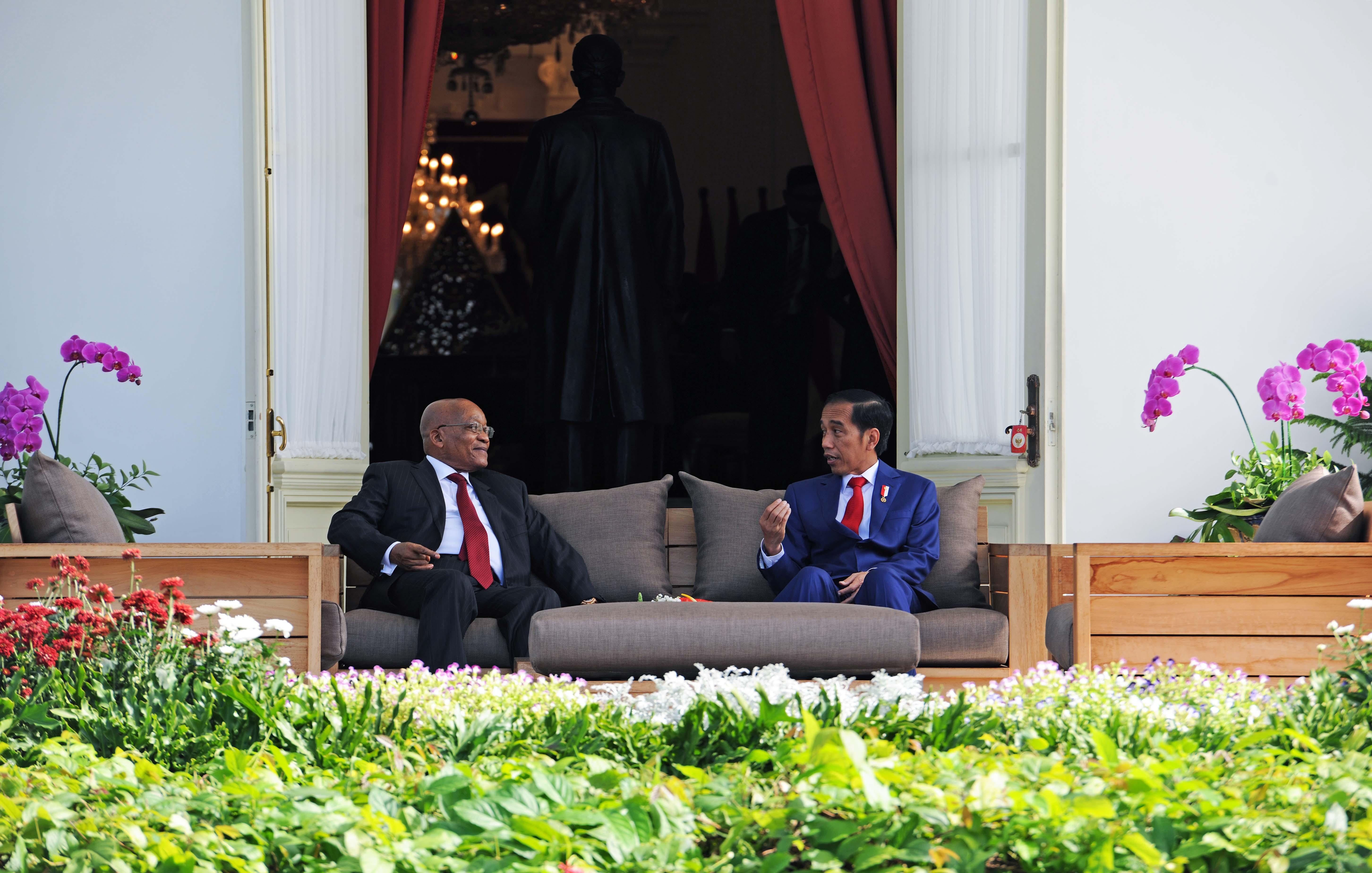 Presiden Jokowi saat melakukan Veranda Talk bersama Presiden Afrika Selatan, Jacob Zuma di Istana Merdeka, Jakarta. Rabu (8/3). (Foto: Humas/Jay)