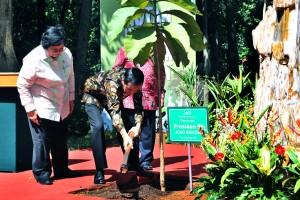 """Presiden Jokowi didampingi Menteri LHK Siti Nurbaya menanam pohon secara simbolis dalam acara Peringatan Hari Lingkungan Hidup Tahun 2017, di Manggala Wana Bhakti Kementerian Lingkungan Hidup dan Kehutanan, Jakarta, Rabu (2/8). (Foto"""" Humas/Oji)"""