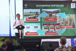 Presiden Jokowi saat menghadiri Hari Tani Nasional 2017, di Kelurahan Kalibening, Kecamatan Tingkir, Kota Salatiga, Provinsi Jawa Tengah, Senin (25/9). (Foto: Humas/Oji)