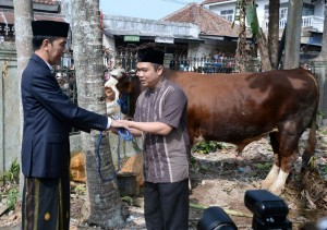 Presiden saat menyerahkan hewan kurban di Sukabumi, Jumat (1/9). (Foto: BPMI)