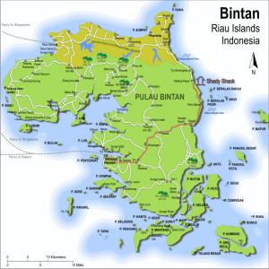 Peta Bintan