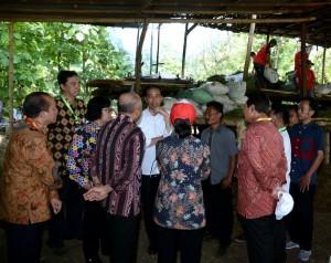 Presiden Jokowi saat melakukan peninjauan