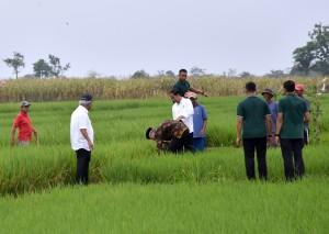 Presiden kepada wartawan usai menyerahkan 5.500 sertifikat untuk warga Tegal dan sekitarnya, di lapangan Dukuh Salam, Slawi, Tegal, Jawa Tengah, Senin (15/1)