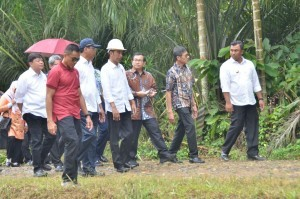 President Jokowi inspects the implementation of Labor Intensive Program in Dharmasraya Regency, on Wednesday (7/2)
