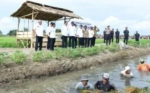 President Jokowi visits Cash for Work Program, in Seram Barat Regency, Maluku, Wednesday (14/2) afternoon (Photo: BPMI Setpres)