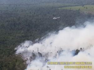 Pengamatan hutan dari atas, Selasa (20/2). (Foto: Dokumentasi BNPB).