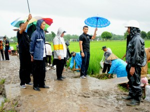 Presiden Jokowi saat meninjau program pada karya tunai, di Desa Panyangkalan, Kabupaten Gowa, Sukawesi Selatan, Kamis (15/2). (Foto: Humas/Rahmat)