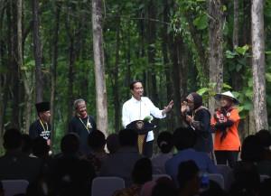Presiden Jokowi saat pembagian Surat Keputusan (SK) perhutanan sosial bagi rakyat di Desa Ngimbang, Tuban, Jawa Timur, Jumat (9/3). (Foto: Humas/Agung).