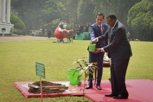 President Jokowi and President Namibia plant ironwood at the Bogor Palace, Thursday (30/8). Photo by: Oji/Public Relations Division of Cabinet Secretariat).