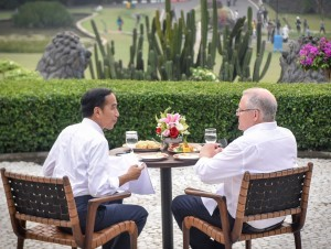 President Jokowi drinks tea with Australian Prime Minister Scott Morrison at the Bogor Palace on Friday (31/8). (Photo by: Public Relations Division of Cabinet Secretariat/ Agung).