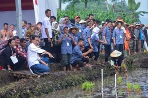Presiden Jokowi meninjau Penyaluran Kredit Usaha Rakyat (KUR) & Kartu Tani serta Tanam Padi di Kampung Kaumluwuk, Desa Leuwigoong, Kabupaten Garut, Jawa Barat, Sabtu (19/1) pagi. (Foto: AGUNG/Humas)