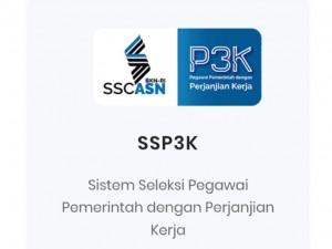 Banner pengumuman di sscnasn.bkn.go.id