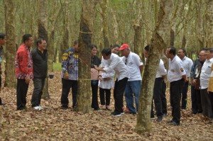 President Jokowi on the Gathering with South Sumatra Provincial Rubber Farmers event in Banyuasin District, Saturday (9/3). (Photo by: Oji/PR).