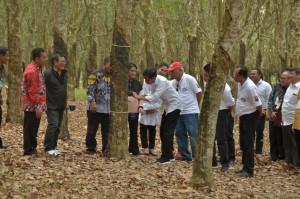 Presiden pada acara Silaturahmi dengan Petani Karet Se-Provinsi Sumsel, di Pusat Penelitian Karet, Balai Pusat Penelitian Sembawa, Kabupaten Banyuasin, Sabtu (9/3). (Foto: Humas)